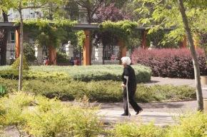Diagnóstico de un Chamberí envejecido y feminizado, 'rico' y conestudios