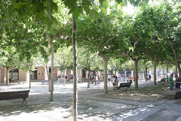 Parque Movil 1